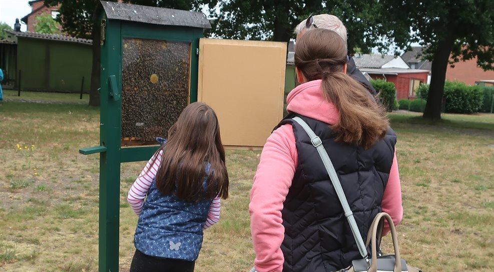 Ohne Bienen Kein Gleichgewicht Imkerverein Osterholz